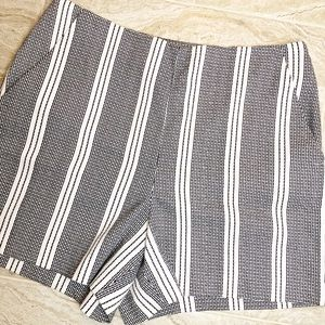 Anne Taylor High Waist Flat Front Shorts Size 10
